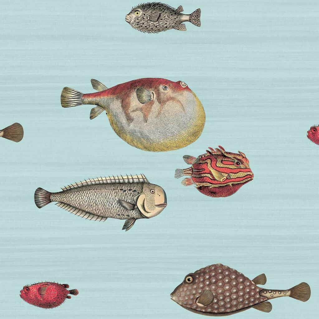 Cole & Son - Wallpaper Acquario