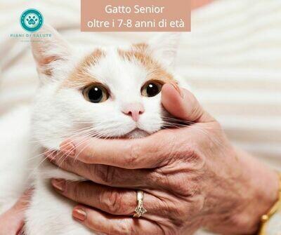 Piano di Salute Gatto Senior