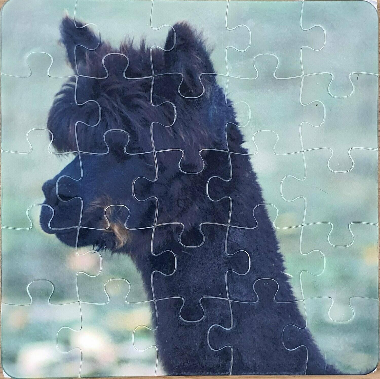 Puzzle en Polymère carré 16x16 Ep. 3mm 25 pièces