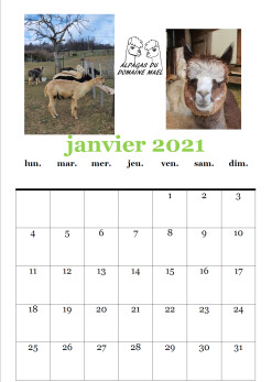 Calendrier ADM Janvier 2021