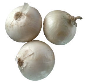 Certified Organic White Onion
