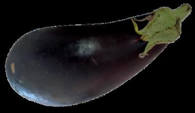 Certified Organic Eggplant