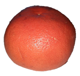 Certified Organic Orange Grapefruit