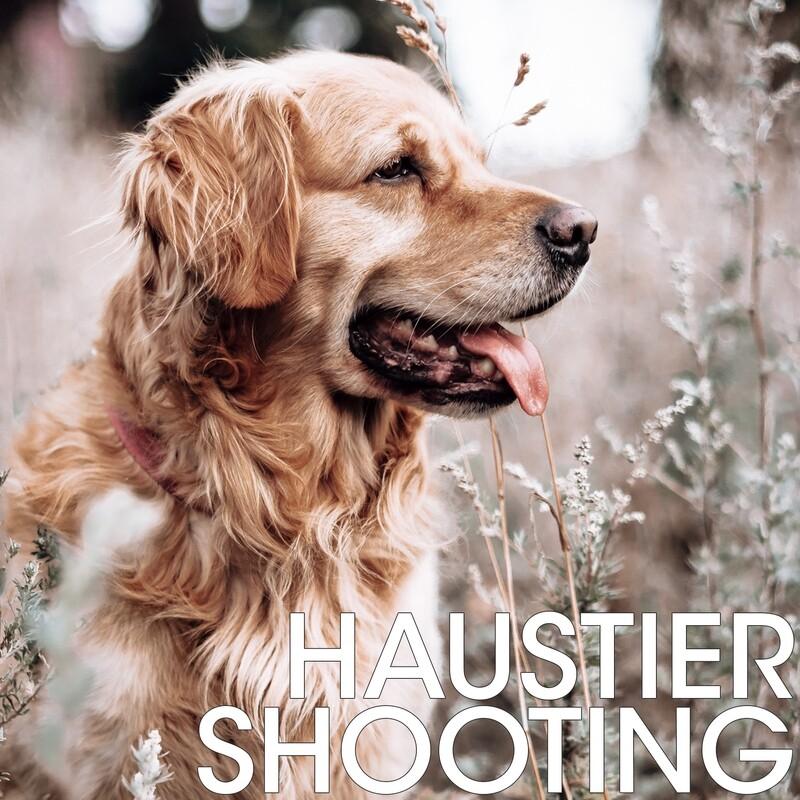 Haustiershooting