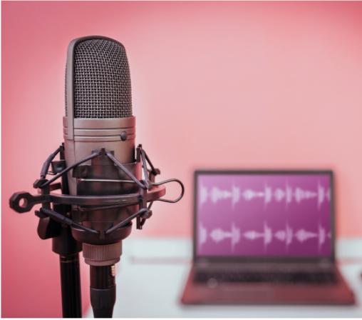 Podcast Consultation