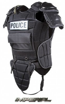 Upper Body Protection System