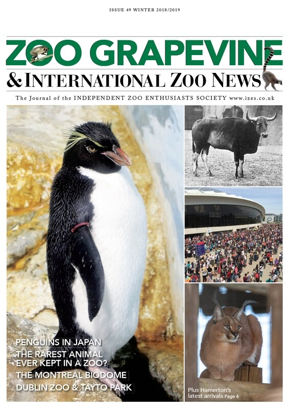 Zoo Grapevine Winter 2018/2019