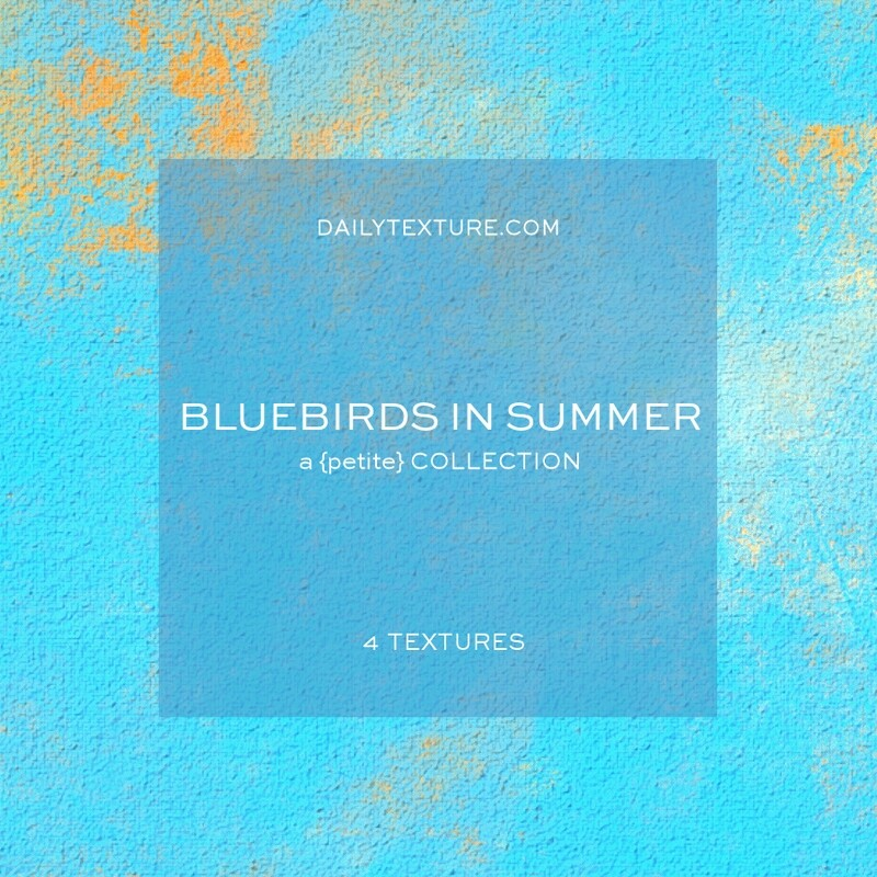Bluebirds in Summer A Petite Texture Collection
