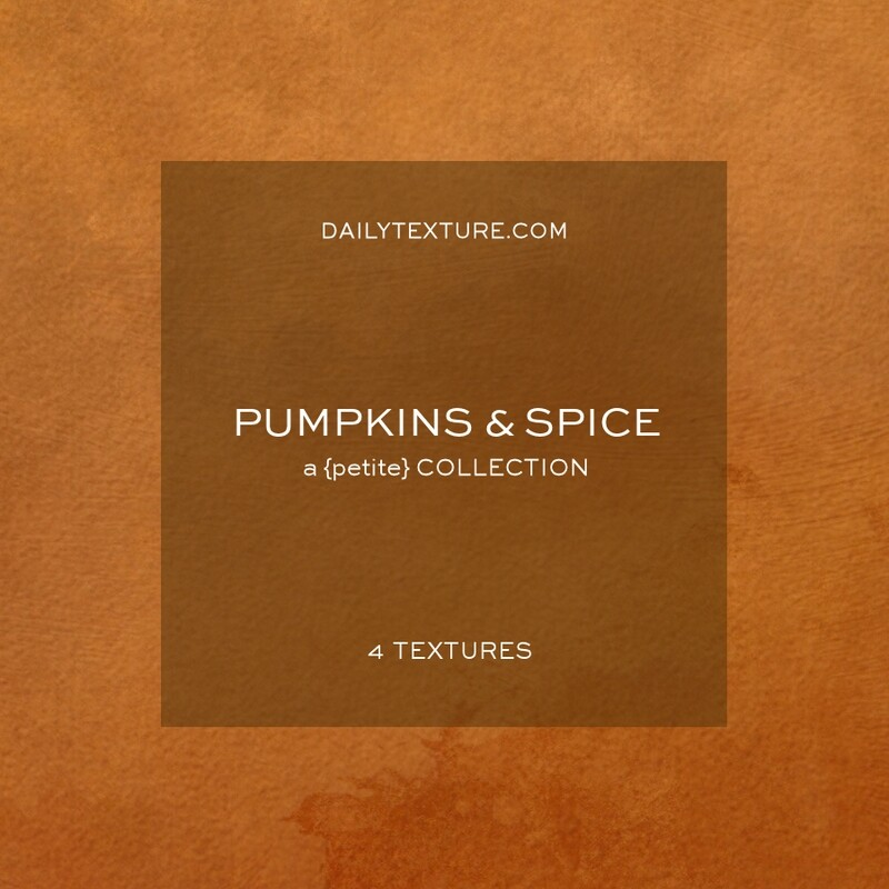 Pumpkins and Spice A Petite Texture Collection