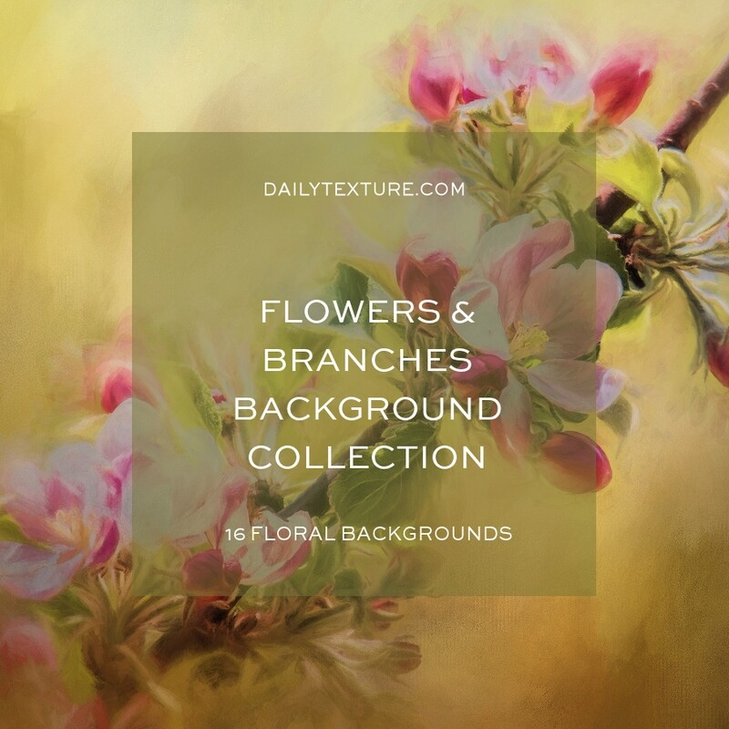 Flowers and Branches Backgrounds Collection