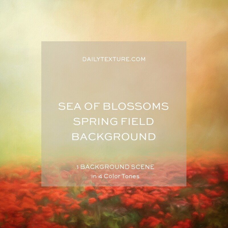 Sea Of Blossoms Spring Field Background Collection