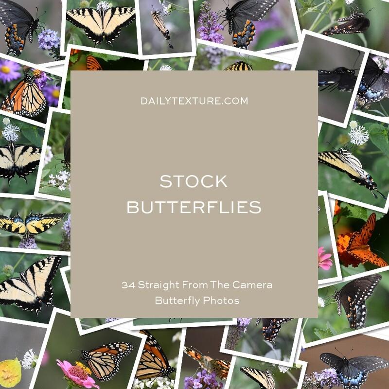 Daily Texture Stock Photos - Butterflies