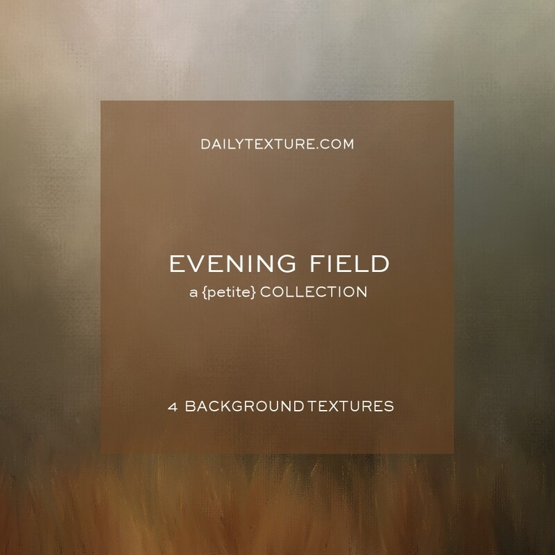 Evening Field A Petite Background Collection
