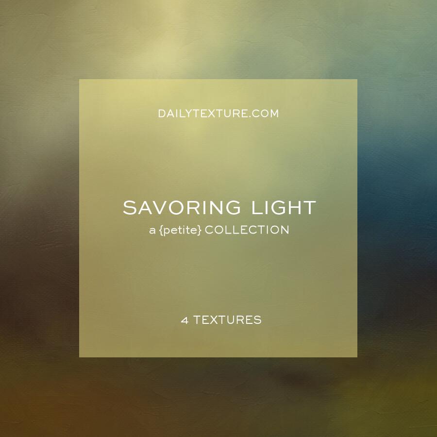 Savoring Light A Petite Texture Collection