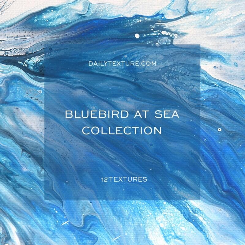 Bluebird At Sea Texture Collection