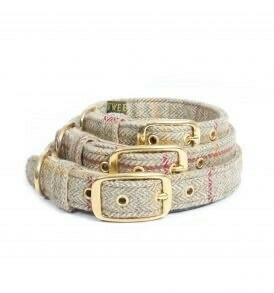 Traditional  dog collars size S