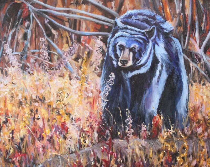 Black Bear in Blue