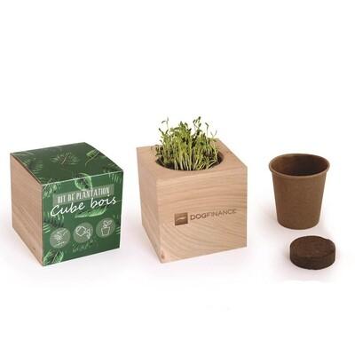 Cube bois Graines à planter