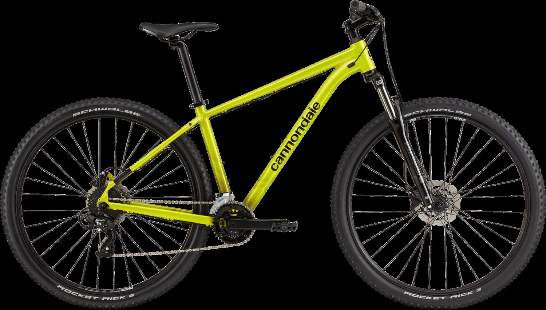 Cannondale Trail 8  29 2021
