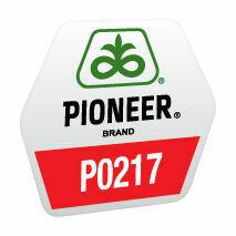 P0217 FAO 440 ÚJ 2020-as hibrid