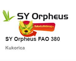 SY ORPHEUS FAO 380