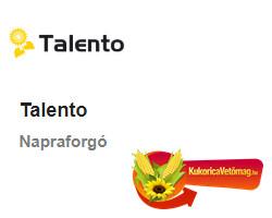TALENTO HO CL