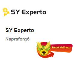 SY EXPERTO HO CL