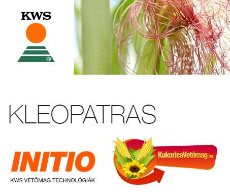 KLEOPATRAS FAO 600 - 650