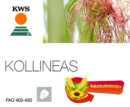 KOLLINEAS FAO 400-450