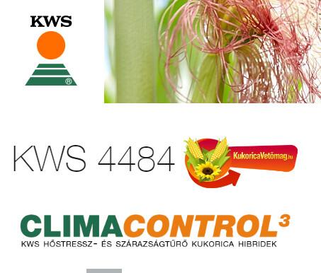 KWS 4484 FAO 350-400