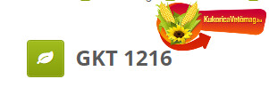 GKT 1216 FAO 220 ÚJ 2020-as hibrid