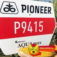 P9415 FAO 350 AQUAmax®