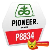 P8834 FAO 290
