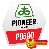P9590 FAO 360
