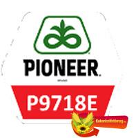 P9718E waxy FAO 390