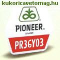 PR36Y03 FAO 430