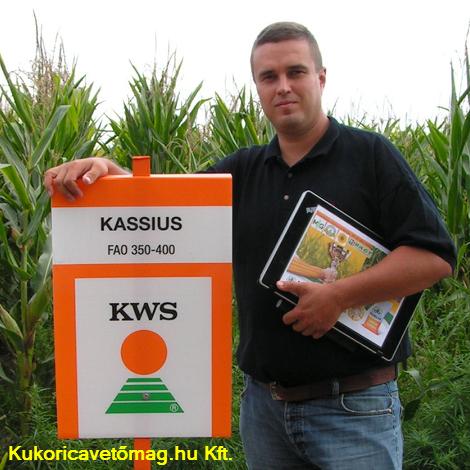 KASSIUS FAO 350-400