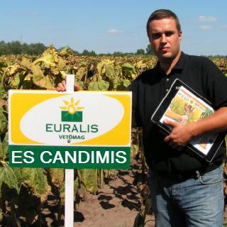 ES CANDIMIS CL+