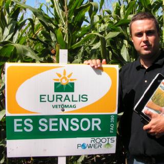ES Sensor