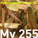 MV 255 FAO 290