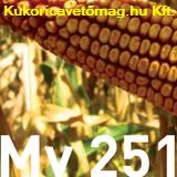 MV 204 FAO 260