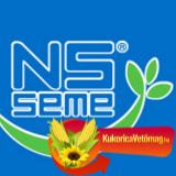NS PRIMI CL