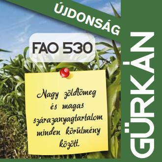 Gürkán siló FAO 530