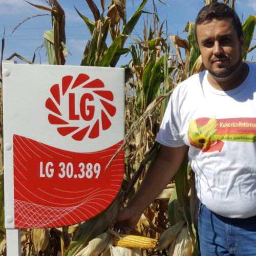 LG 30.389 FAO 390