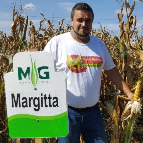 Margitta FAO 300