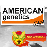 AGN 350 FAO 350 (25.000 szem/zsák)