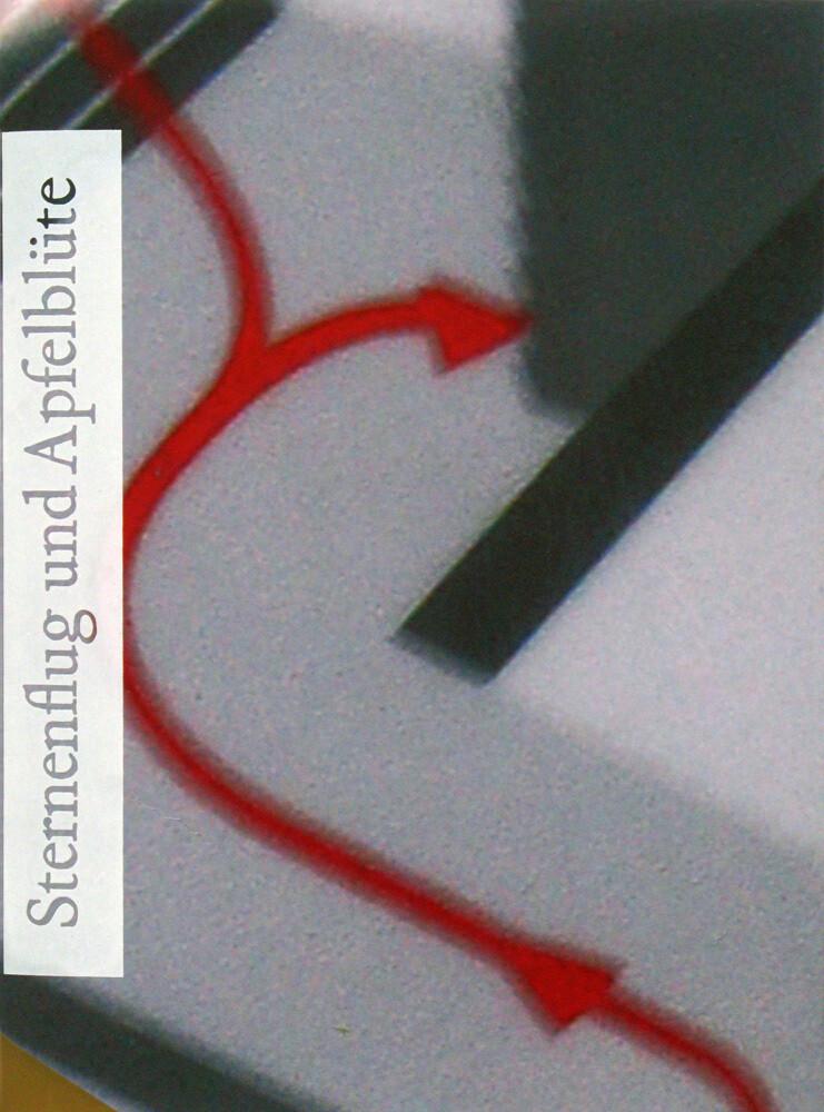 Sternenfug und Apfelblüte, SIGNED, artist book, extra verlag, 2013, free shipping