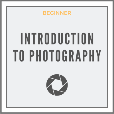 Introduction To Photography-Remote Version
