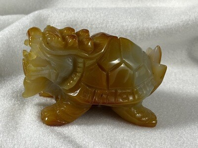 Carnelian Turtle Dragons