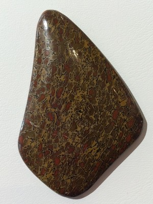 Oblique cut gem dino bone cab